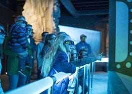 Moab Giants 5d Aquarium