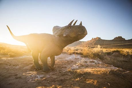 Moab Giants Outside Triceratops