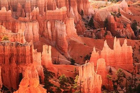Utah National Parks Bryce