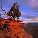 Island in the Sky - Canyonlands